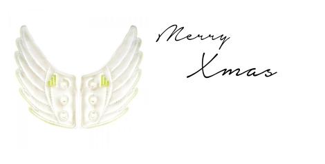 Merry Christmas Shwings Wings Flügel weiss